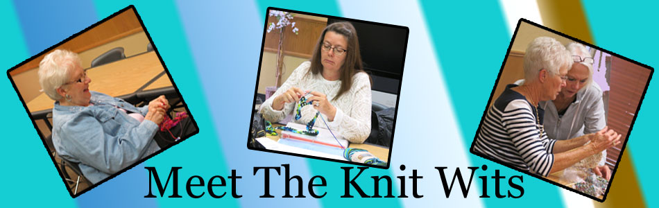 Meet The Knit Wits